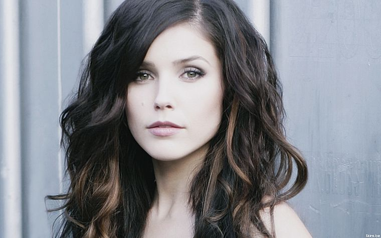 women, Sophia Bush - desktop wallpaper