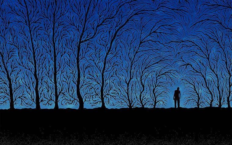 creepy, abstract, trees, night, forests, silhouettes, shadows, haunted, dusk - desktop wallpaper