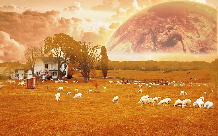 multicolor, animals, planets, orange, surreal, farms, ranch - desktop wallpaper