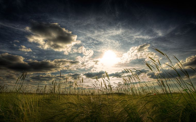 clouds, landscapes, nature, fields, HDR photography - desktop wallpaper