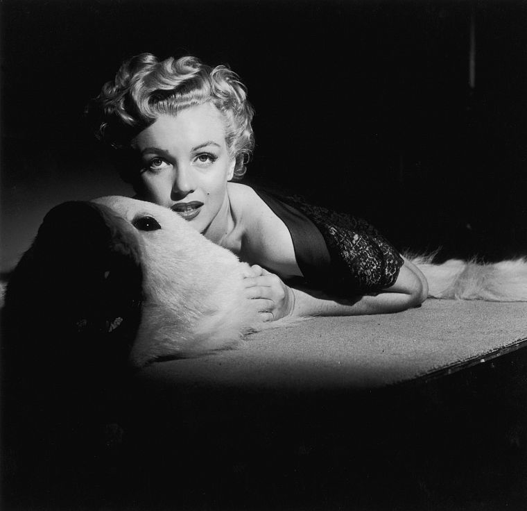 Marilyn Monroe, grayscale, monochrome - desktop wallpaper