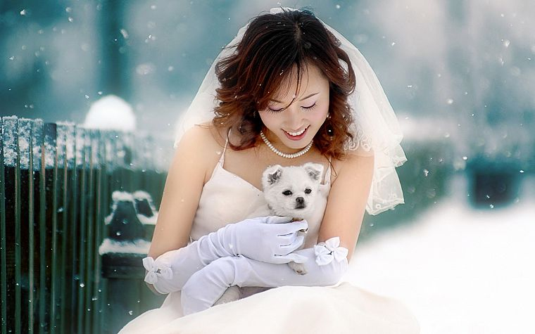 women, winter, snow, dogs, brides, Asians - desktop wallpaper
