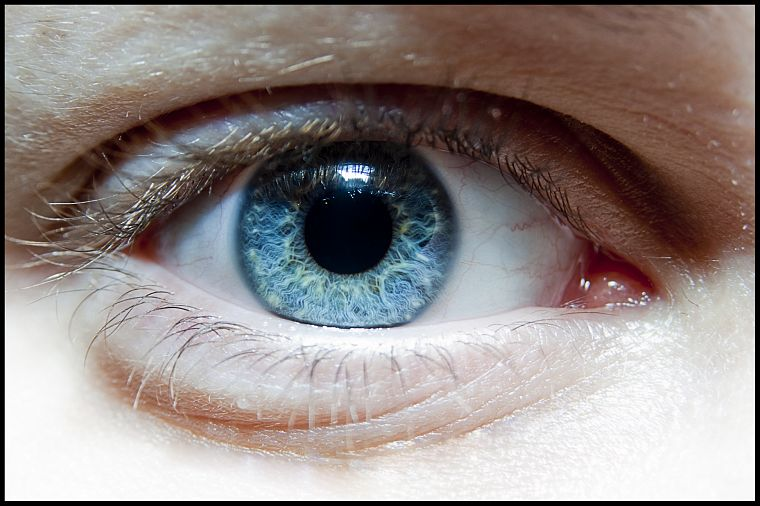 close-up, blue, eyes, macro - desktop wallpaper