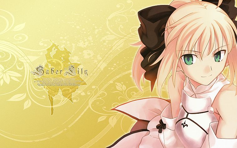 Fate/Stay Night, Fate Unlimited Codes, anime, Saber, soft shading, Saber Lily, detached sleeves, Fate series - desktop wallpaper