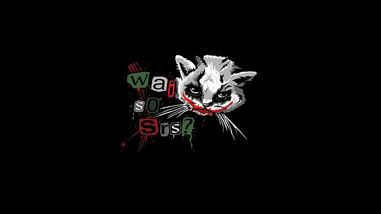 The Joker, kittens, Why So Serious? - desktop wallpaper