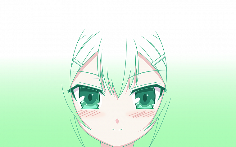 green, Baka to Test to Shoukanjuu, Kinoshita Hideyoshi, simple background - desktop wallpaper