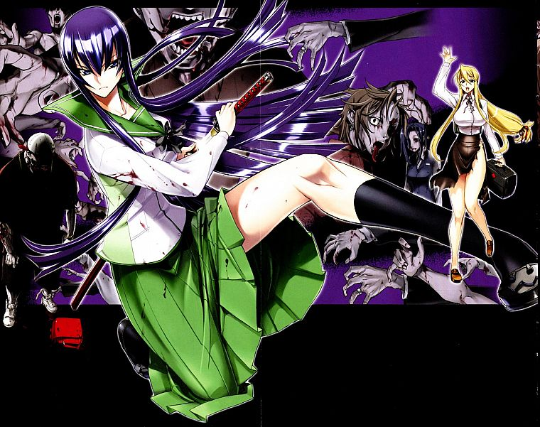 Highschool of the Dead, Busujima Saeko, Marikawa Shizuka - desktop wallpaper