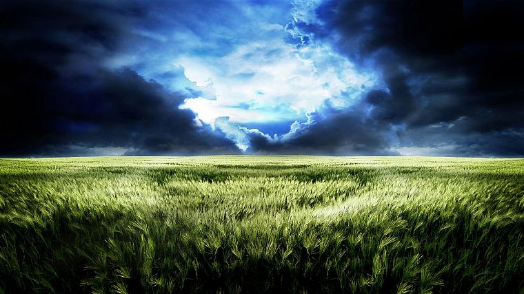 green, landscapes, grass, skyscapes - desktop wallpaper