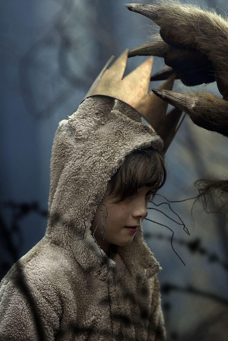 Where The Wild Things Are Crowns Free Wallpaper Wallpaperjam Com