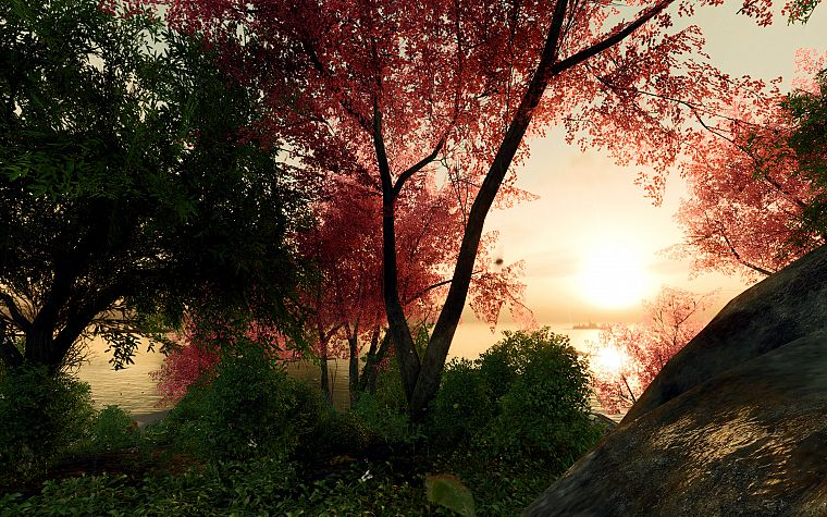 landscapes, nature, trees, forests, digital art, 3D renders - desktop wallpaper