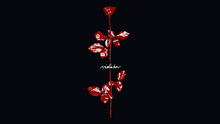 red, flowers, roses, Violator - desktop wallpaper