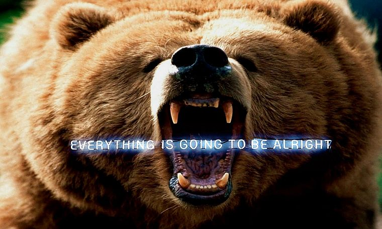 animals, funny, bears, roar, Everything Is Going To Be Alright - desktop wallpaper
