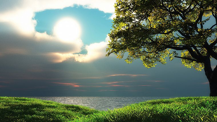 green, ocean, landscapes, nature, Sun, trees, grass, HDR photography, skyscapes, sea - desktop wallpaper