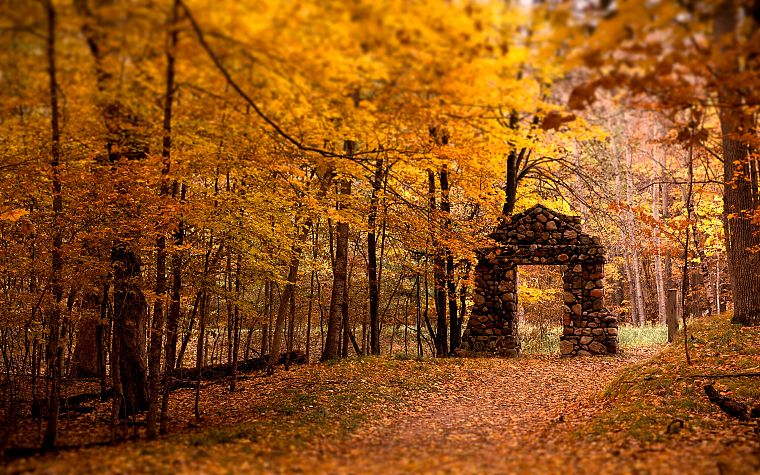 landscapes, nature, autumn, forests, gate - desktop wallpaper