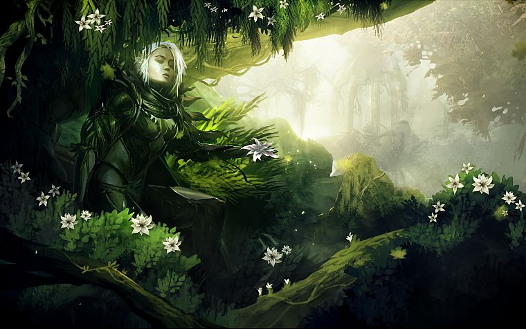 video games, nature, Guild Wars, fantasy art, artwork - desktop wallpaper
