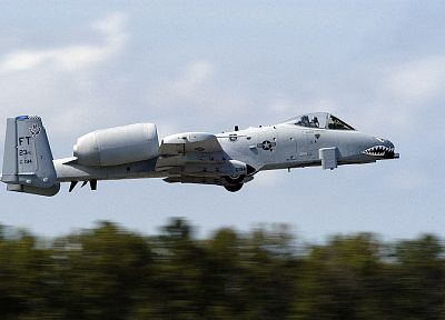aircraft, military, planes, vehicles, A-10 Thunderbolt II, nose art - related desktop wallpaper