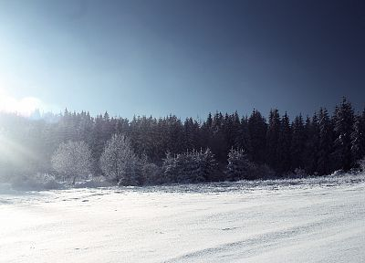 landscapes, nature, winter, snow - desktop wallpaper