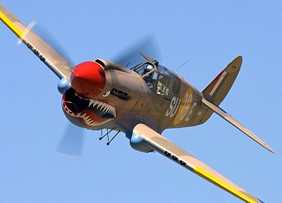 aircraft, military, World War II, P40 Warhawk - related desktop wallpaper