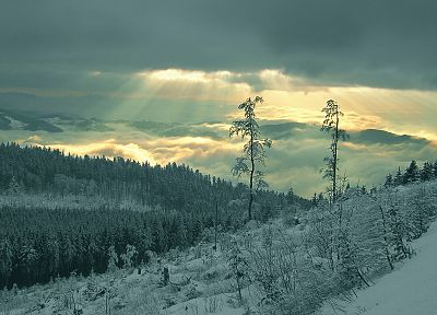 mountains, clouds, landscapes, nature, snow, Sun, trees, forests, clearcut - desktop wallpaper