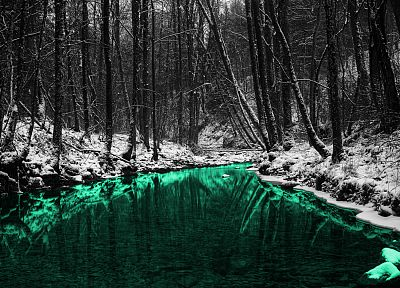 green, nature, forests, outdoors, selective coloring, rivers - random desktop wallpaper