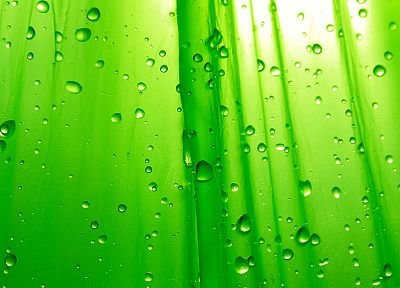 green, water drops - desktop wallpaper