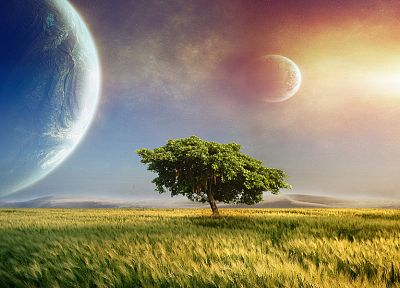 nature, outer space, trees, planets, grass, science fiction - related desktop wallpaper