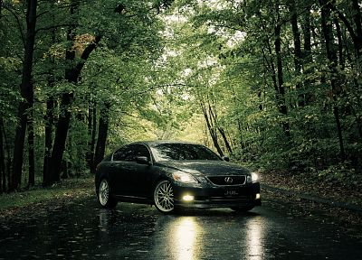 trees, cars, roads, Lexus - related desktop wallpaper