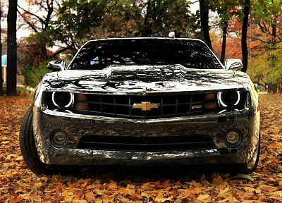 nature, trees, autumn, cars, leaves, silver, vehicles, Chevrolet Camaro, reflections, front view - desktop wallpaper