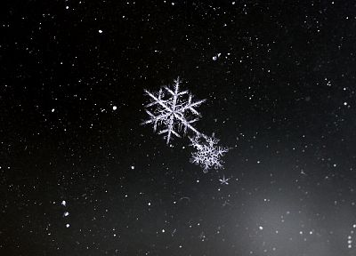 snowflakes, black background - random desktop wallpaper