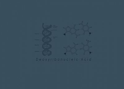 Biology, genetics, DNA - desktop wallpaper