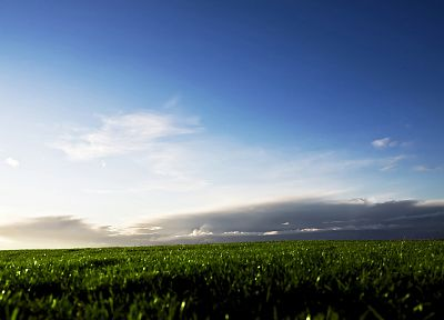 grass, fields, skyscapes - random desktop wallpaper