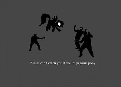ninjas, ninjas cant catch you if, pegasus, My Little Pony, Rainbow Dash - related desktop wallpaper