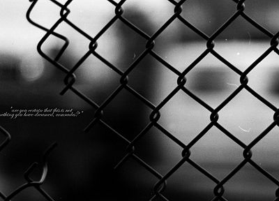 text, quotes, grayscale, chain link fence, comrade - random desktop wallpaper