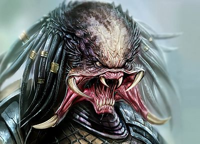 predator, artwork, soft shading - related desktop wallpaper