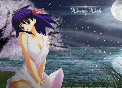 Fate/Stay Night, Matou Sakura, anime girls, Fate series - desktop wallpaper