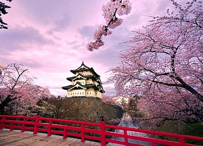 Japan, castles, cherry blossoms, pink, houses, japanese bridge, Hirosaki Castle - random desktop wallpaper