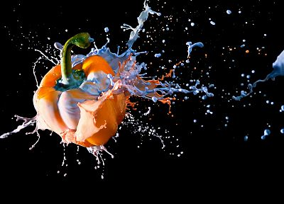multicolor, paint, black background, colors, splashes - desktop wallpaper