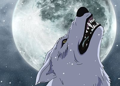 Moon, Wolfs Rain, Kiba, wolves - random desktop wallpaper