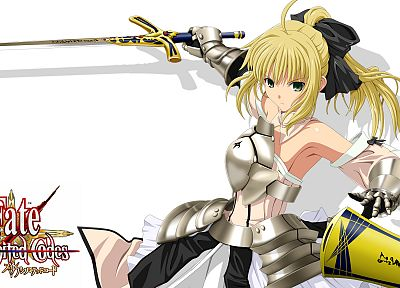 Fate Unlimited Codes, Saber, Saber Lily, Fate series - desktop wallpaper