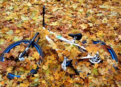 bike, autumn, leaves, Ukraine, Cycle, fallen leaves - related desktop wallpaper