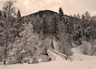 landscapes, winter, snow, trees, bridges, HDR photography, pedestrian bridges - related desktop wallpaper