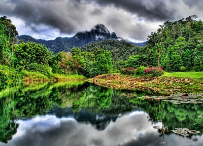 mountains, landscapes, jungle, HDR photography, rivers - desktop wallpaper