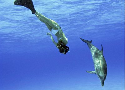 women, Hayden Panettiere, celebrity, dolphins - desktop wallpaper