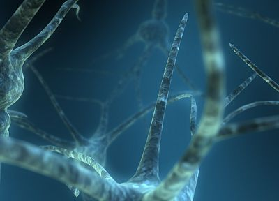 abstract, blue, brain, neurons, nerves - related desktop wallpaper