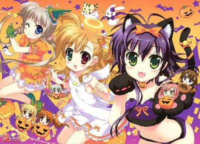 Halloween, Yagami Hayate, nekomimi, heterochromia, animal ears, Rio, Corona - desktop wallpaper