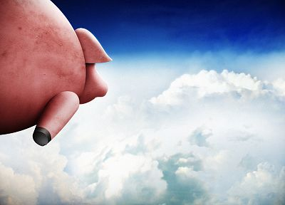 clouds, when pigs fly - random desktop wallpaper