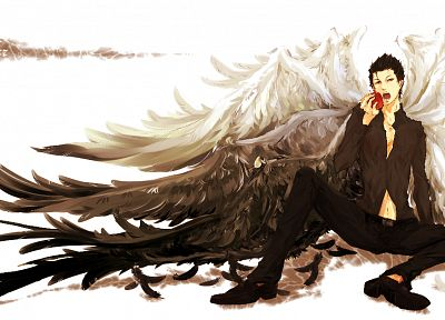 wings, short hair, male, anime, apples, black hair - random desktop wallpaper