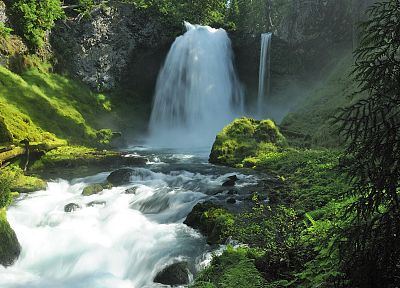 nature, forests, national, Oregon, waterfalls, rivers - desktop wallpaper
