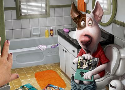 dogs, funny, Playboy magazine, toilets - desktop wallpaper