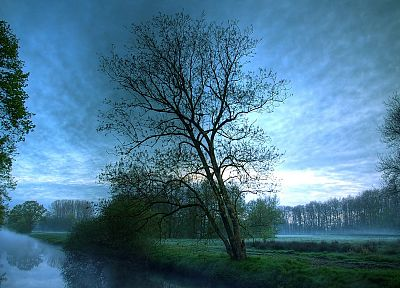 landscapes, nature, trees, mist, rivers, reflections, evening - random desktop wallpaper